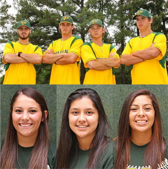 baseball softball honorees