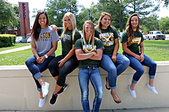 2016 softball honorees